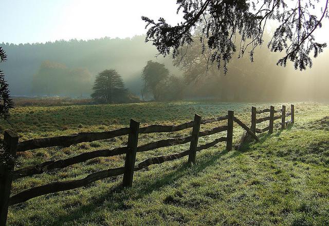 Wooden Fence in a Field